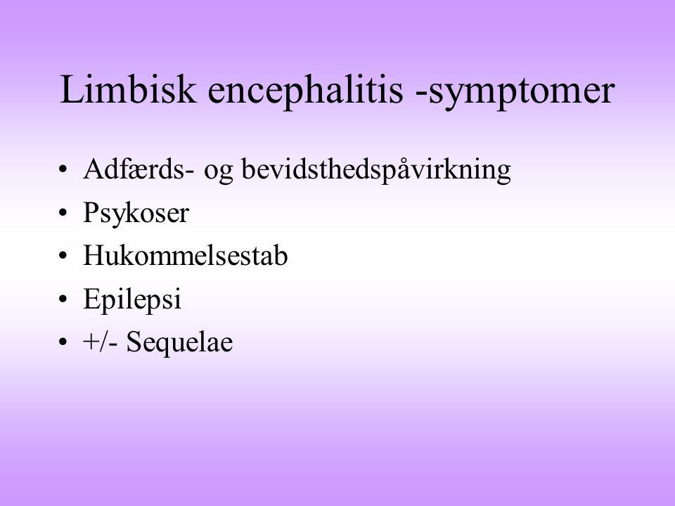 Limbisk encephalitis -symptomer