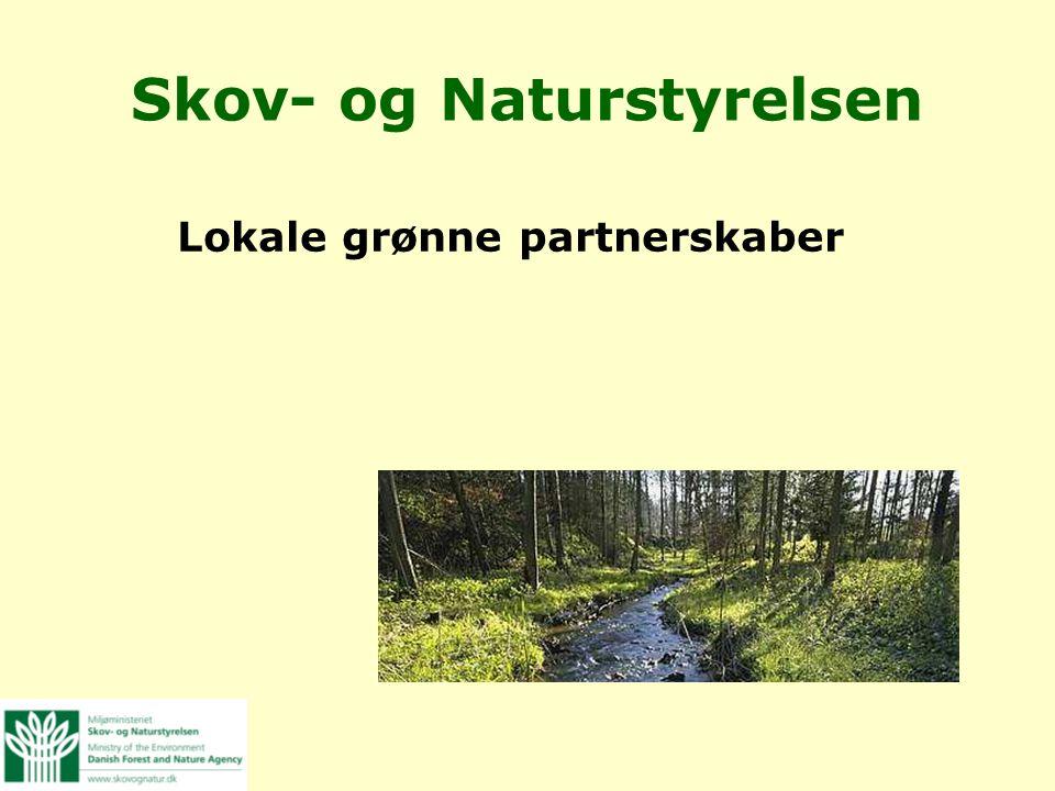 Skov- og Naturstyrelsen