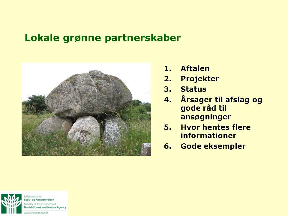 Lokale grønne partnerskaber