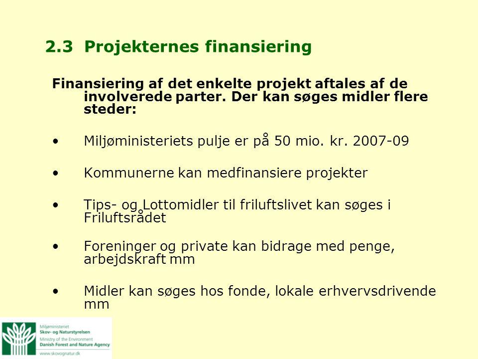 2.3 Projekternes finansiering
