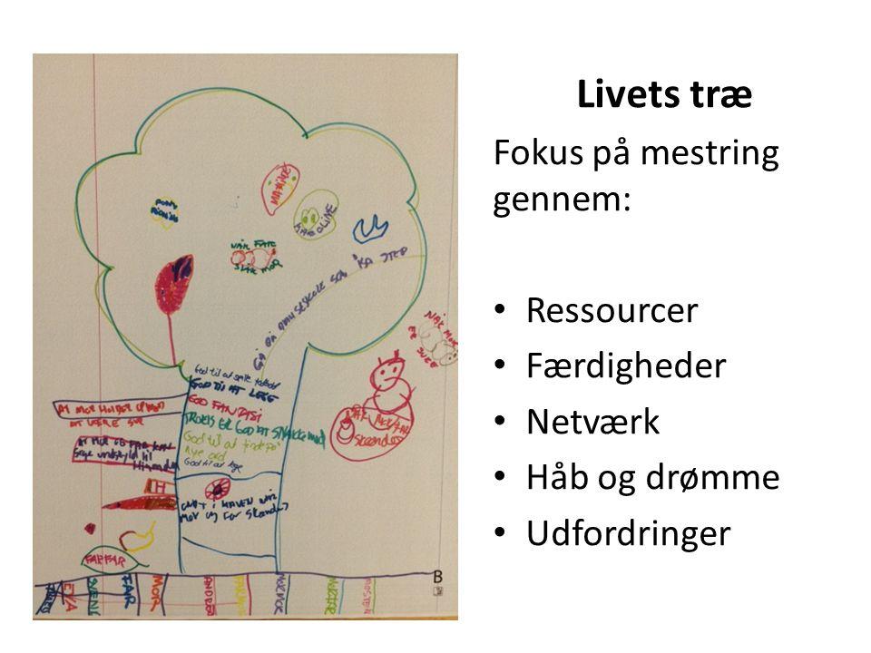 Livets træ Fokus på mestring gennem: Ressourcer Færdigheder Netværk