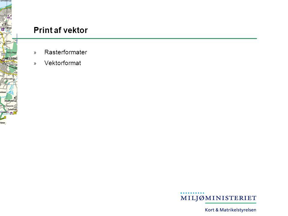 Print af vektor Rasterformater Vektorformat