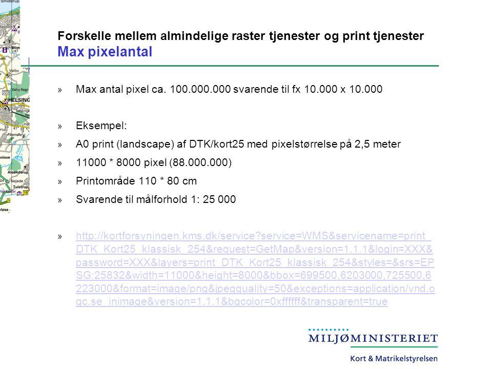 Forskelle mellem almindelige raster tjenester og print tjenester Max pixelantal