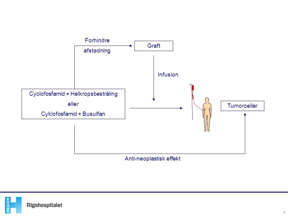 Cyclofosfamid + Helkropsbestråling eller Cyklofosfamid + Busulfan