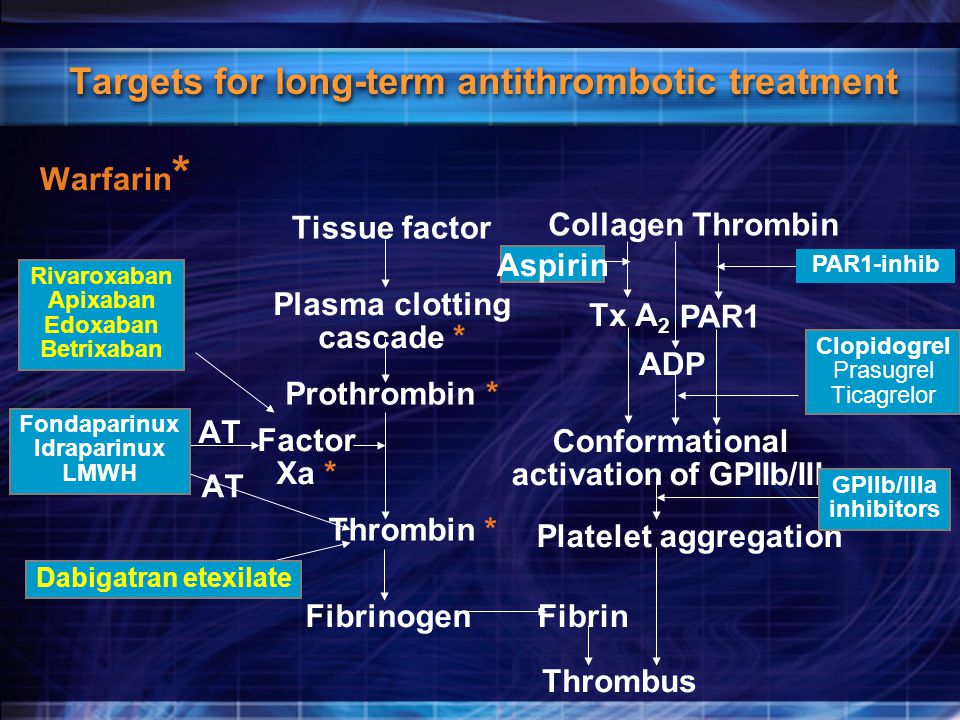 Targets for long-term antithrombotic treatment