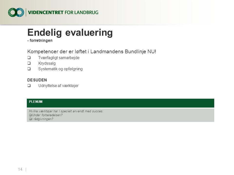 Endelig evaluering - forretningen