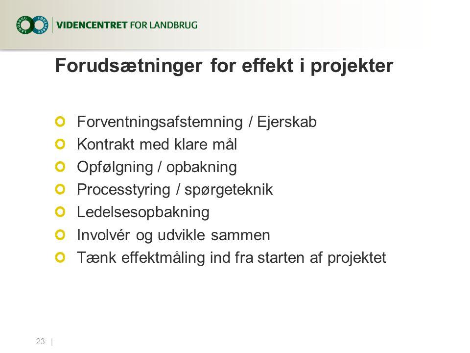 Forudsætninger for effekt i projekter