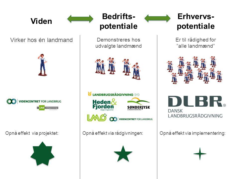 Viden Bedrifts- potentiale Erhvervs-