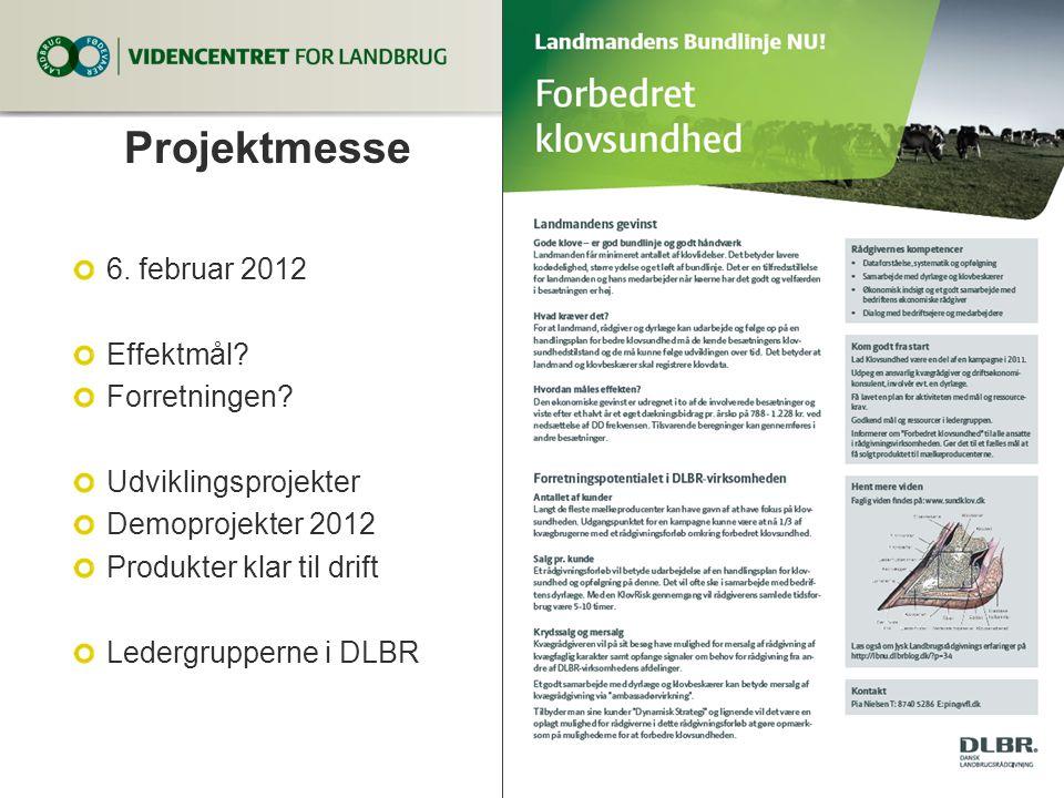 Projektmesse 6. februar 2012 Effektmål Forretningen
