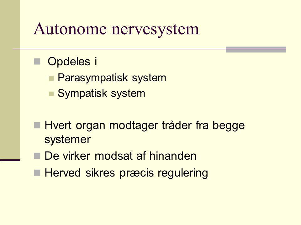 Autonome nervesystem Opdeles i