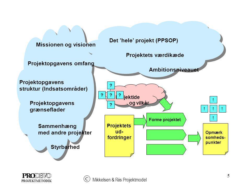 Det 'hele' projekt (PPSOP)