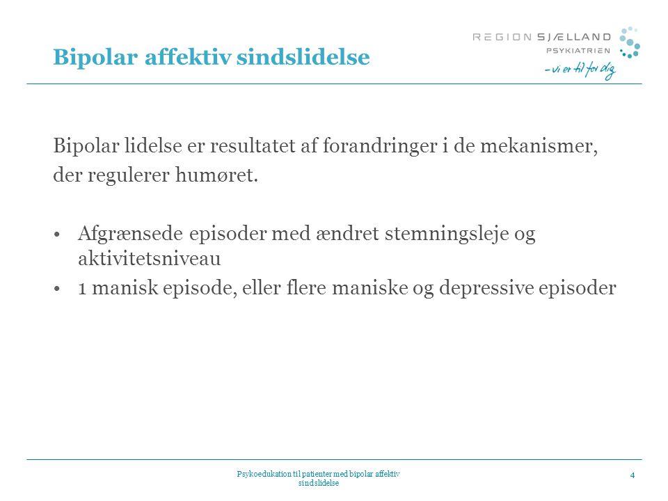 Bipolar affektiv sindslidelse