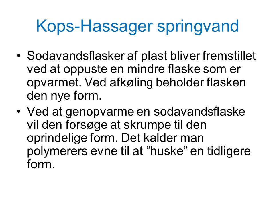 Kops-Hassager springvand