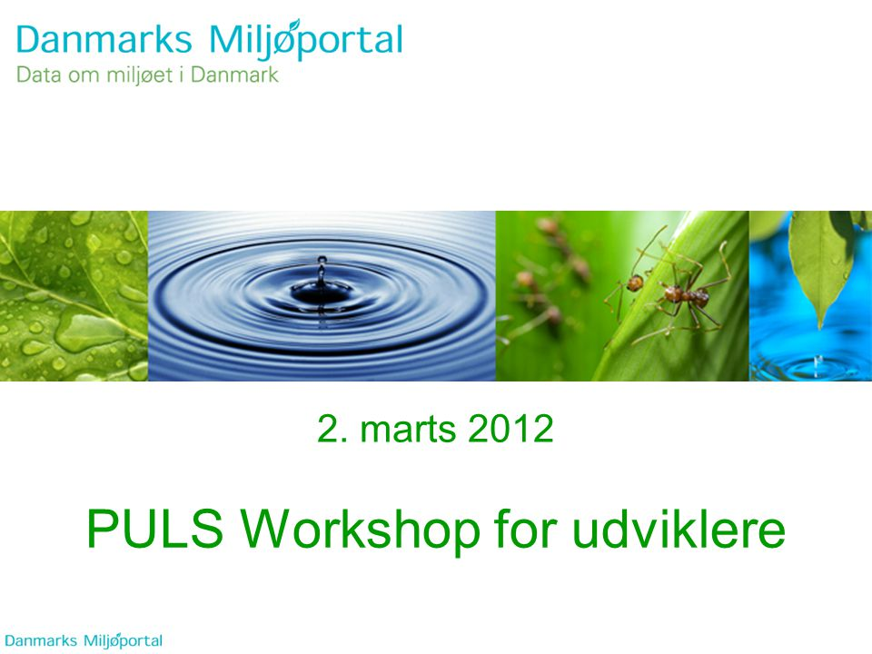PULS Workshop for udviklere