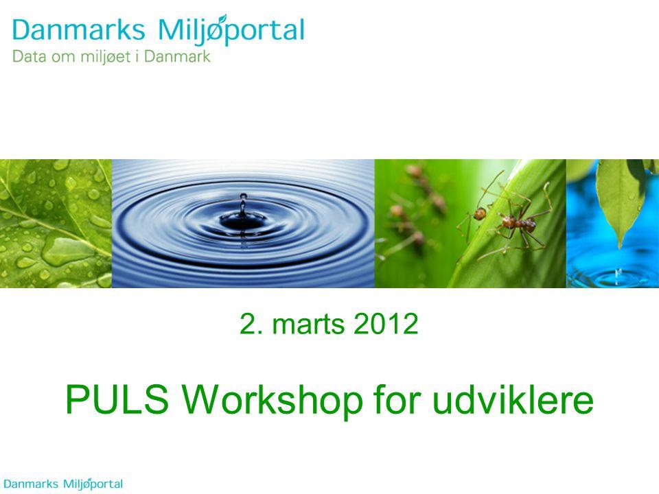 PULS Workshop for udviklere