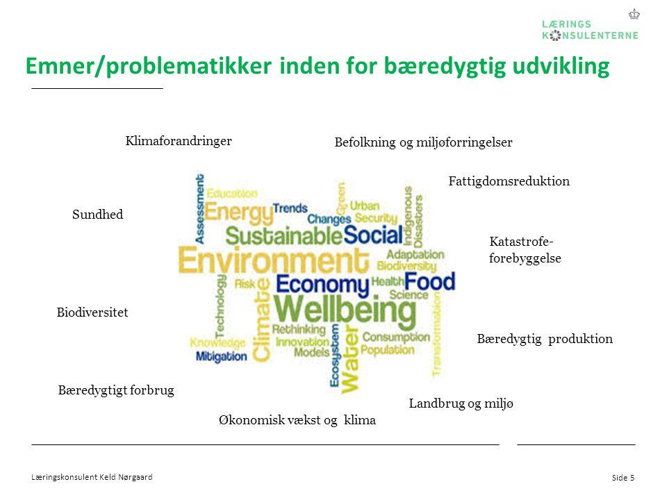 Emner/problematikker inden for bæredygtig udvikling
