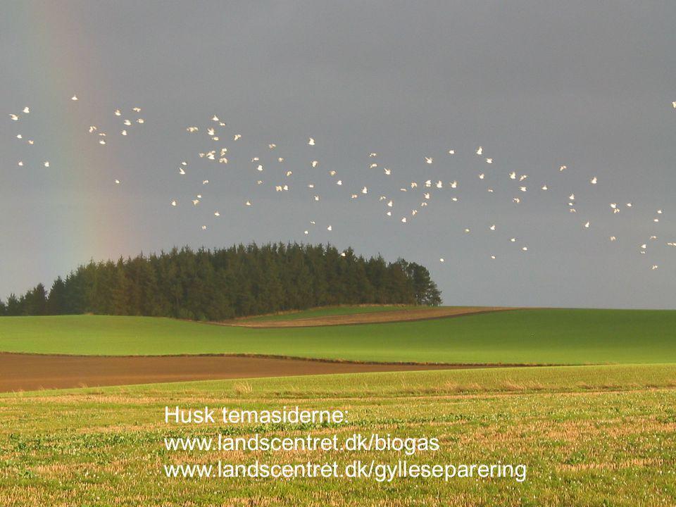 Husk temasiderne: www.landscentret.dk/biogas www.landscentret.dk/gylleseparering