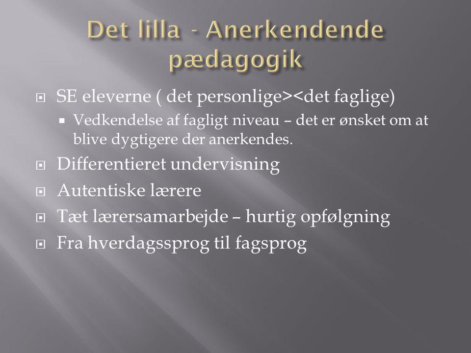Det lilla - Anerkendende pædagogik