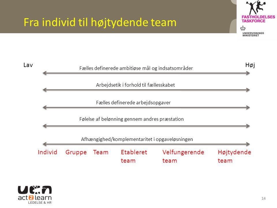 Fra individ til højtydende team