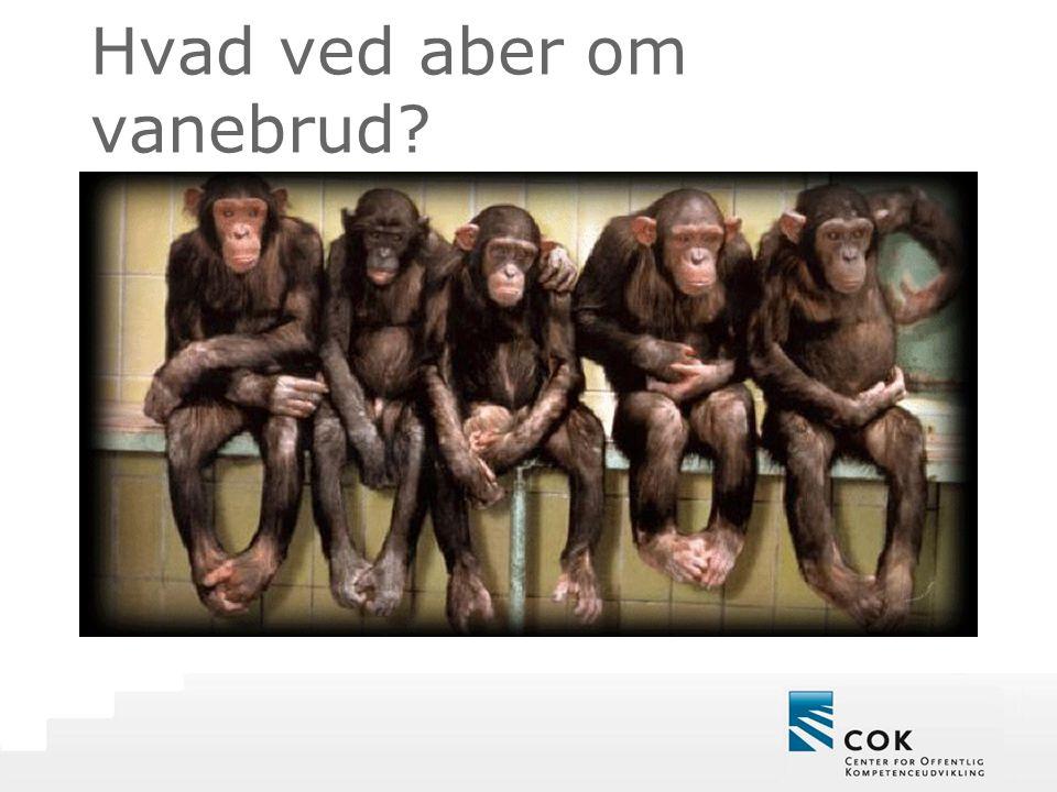 Hvad ved aber om vanebrud