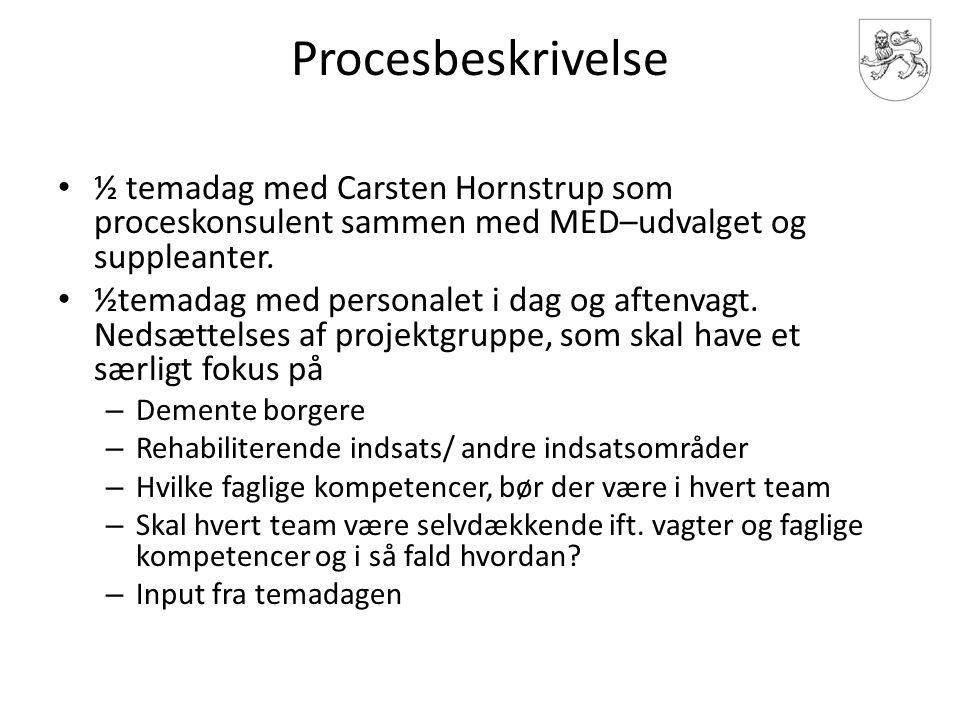 Procesbeskrivelse ½ temadag med Carsten Hornstrup som proceskonsulent sammen med MED–udvalget og suppleanter.