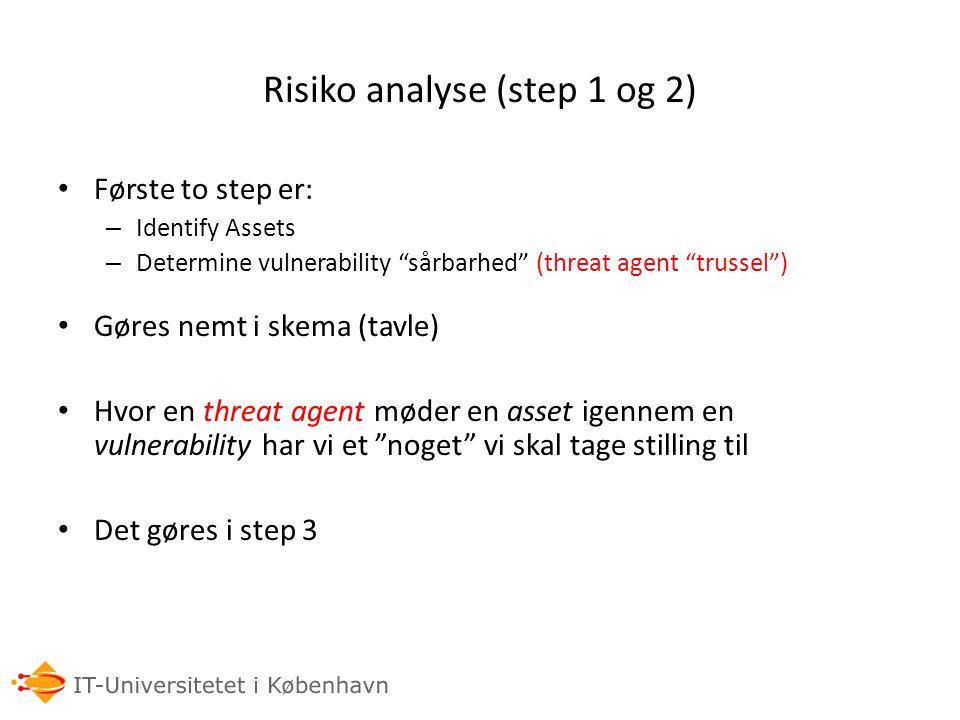 Risiko analyse (step 1 og 2)