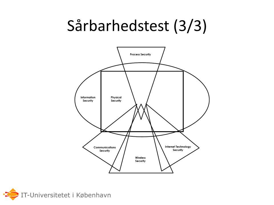 Sårbarhedstest (3/3)