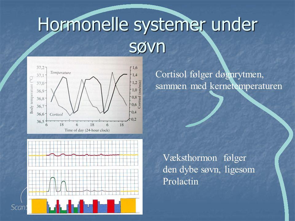 Hormonelle systemer under søvn