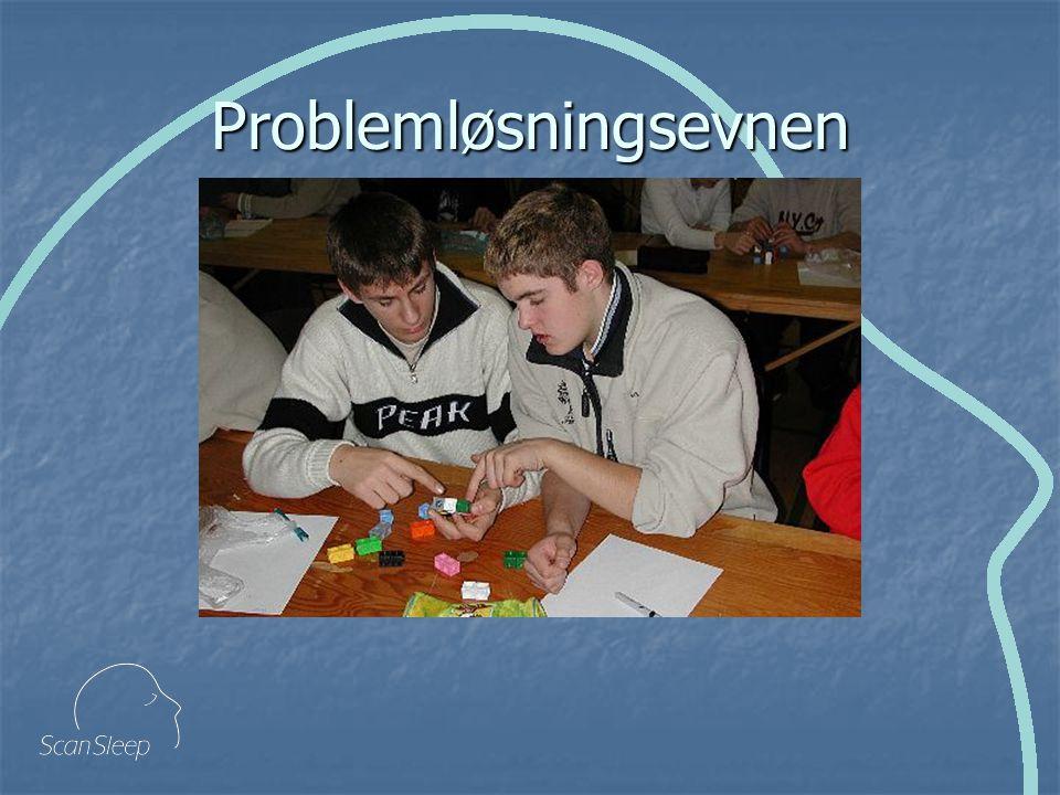 Problemløsningsevnen