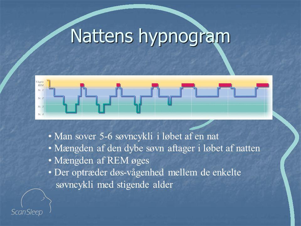 Nattens hypnogram Man sover 5-6 søvncykli i løbet af en nat