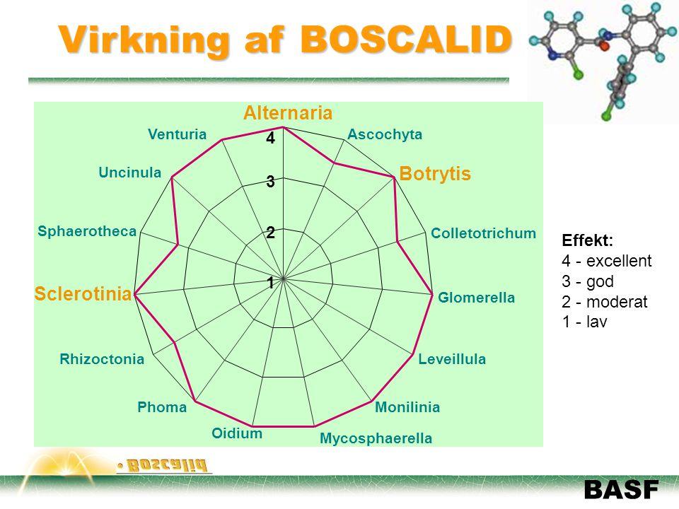 Virkning af BOSCALID Alternaria Botrytis Sclerotinia 4 3 2 Effekt: