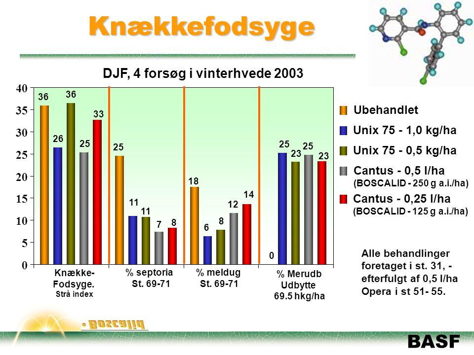 Knækkefodsyge DJF, 4 forsøg i vinterhvede 2003 5 10 15 20 30 35 40