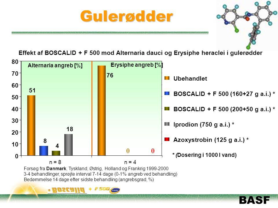 Gulerødder Effekt af BOSCALID + F 500 mod Alternaria dauci og Erysiphe heraclei i gulerødder. 51. 76.