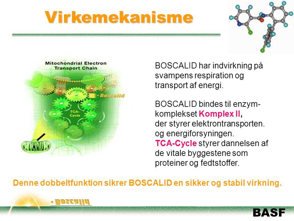 Virkemekanisme BOSCALID har indvirkning på svampens respiration og