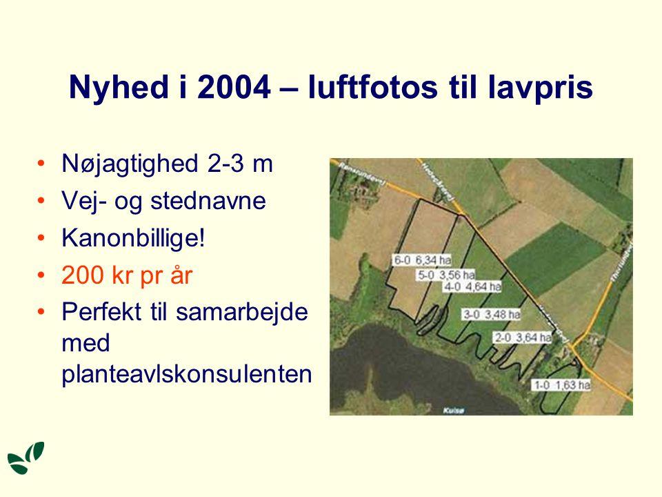 Nyhed i 2004 – luftfotos til lavpris