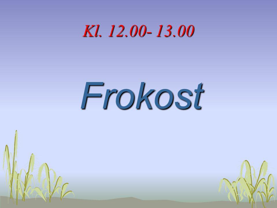 Kl. 12.00- 13.00 Frokost