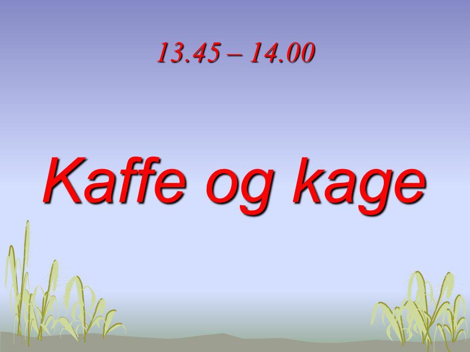 13.45 – 14.00 Kaffe og kage