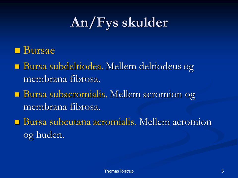 An/Fys skulder Bursae. Bursa subdeltiodea. Mellem deltiodeus og membrana fibrosa. Bursa subacromialis. Mellem acromion og membrana fibrosa.