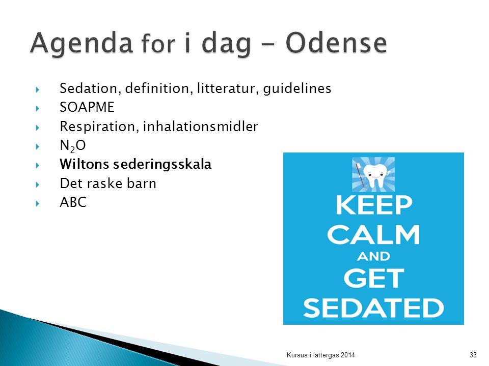 Agenda for i dag - Odense