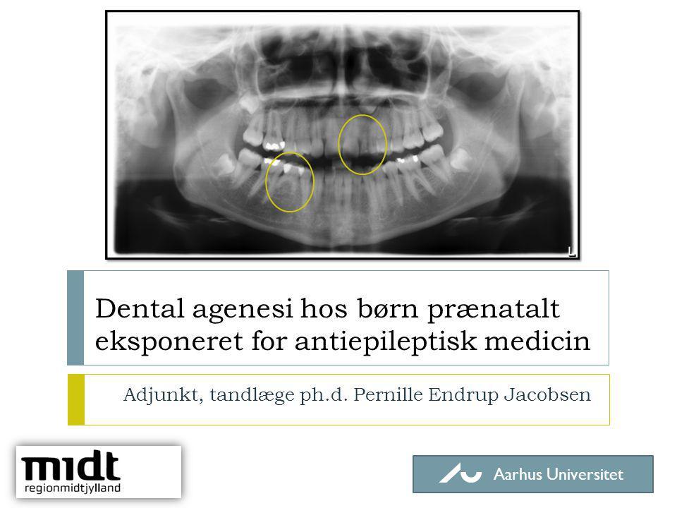 Adjunkt, tandlæge ph.d. Pernille Endrup Jacobsen