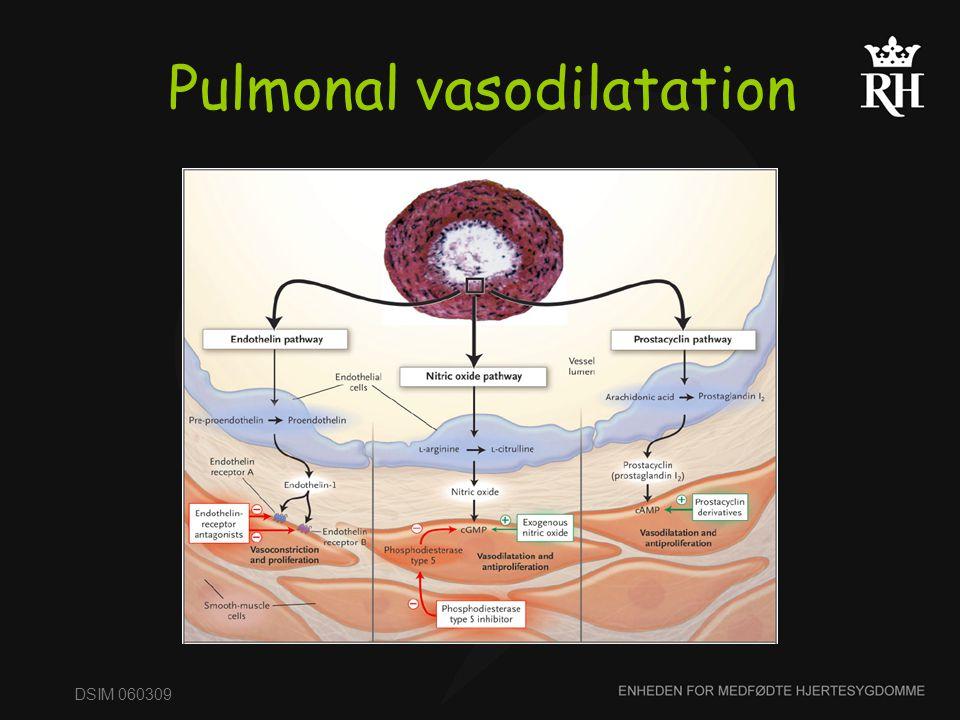 Pulmonal vasodilatation