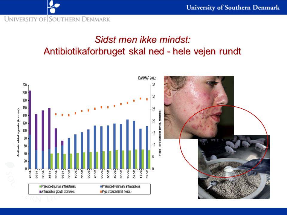 Sidst men ikke mindst: Antibiotikaforbruget skal ned - hele vejen rundt