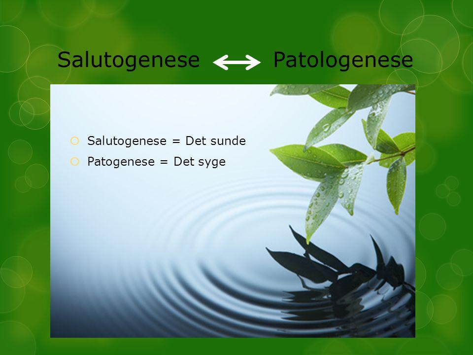 Salutogenese Patologenese