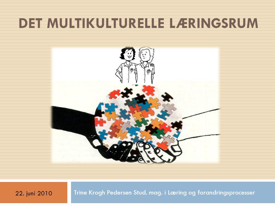 det multikulturelle læringsrum