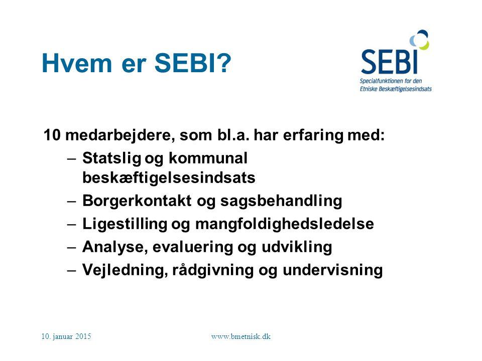 Hvem er SEBI 10 medarbejdere, som bl.a. har erfaring med: