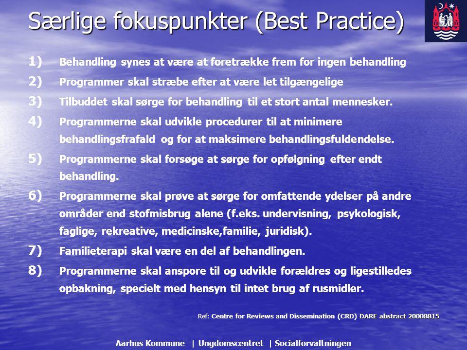 Særlige fokuspunkter (Best Practice)