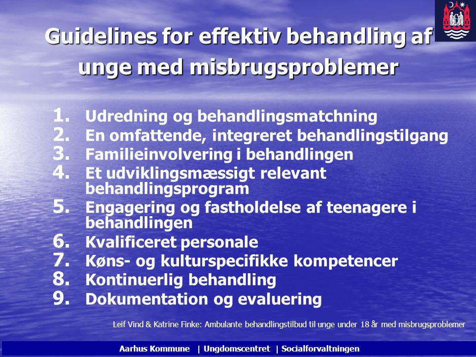 Guidelines for effektiv behandling af unge med misbrugsproblemer