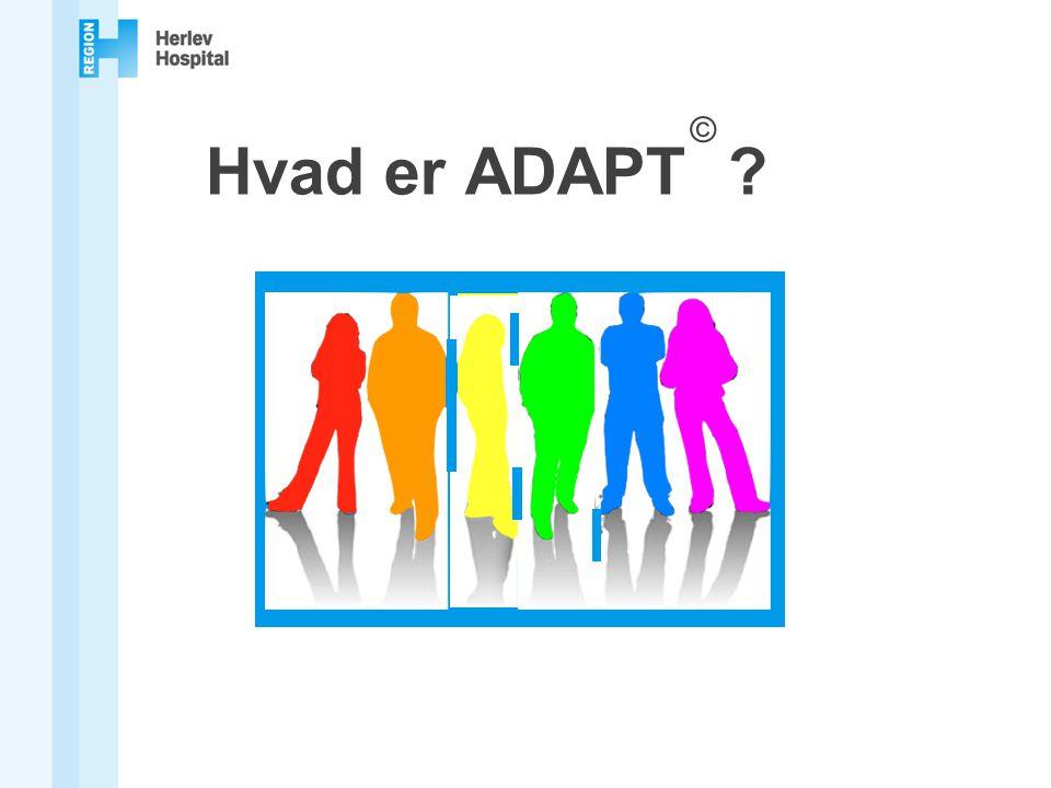 Hvad er ADAPT ©
