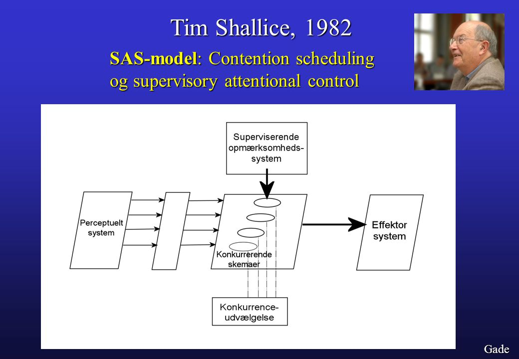 Tim Shallice, 1982 SAS-model: Contention scheduling og supervisory attentional control Gade