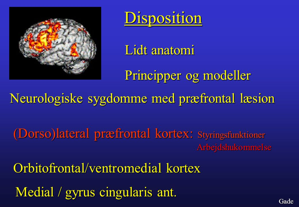 Disposition Lidt anatomi Principper og modeller